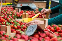 Strawberries on the market stock images