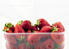 Strawberries market package with a greenhouse background stock photos