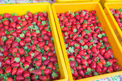 Strawberries on the market Stock Photo