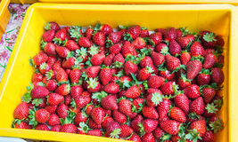 Strawberries on the market Stock Photos