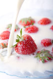 Strawberries and milk. A bowl of milk with  red strawberries. Milk poured into the bowl Royalty Free Stock Photos