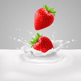 Strawberries with milk. Appetizing strawberries with green leaves falling into milk with splashes Royalty Free Stock Photography