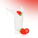 Strawberries with milk splash. Over white Royalty Free Stock Image