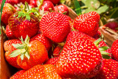 Strawberries natural background Royalty Free Stock Photos