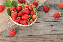 Strawberries in natural background Stock Images