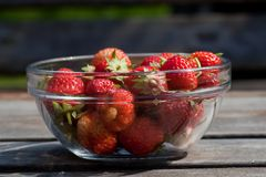 Strawberries. Newly picked strawberries in a bowl Royalty Free Stock Images