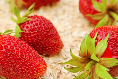 Strawberries on oat Royalty Free Stock Photos