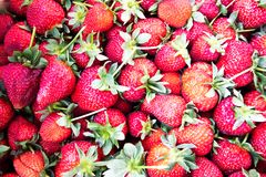 Strawberries - one of the delicious berry. Red strawberries with green leaves - summer delicious  taste. Deep smell and taste of joy stock image