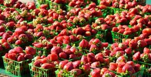 Strawberries in outdoor market Stock Photos