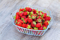 Strawberries outdoor Stock Photos