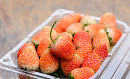 Strawberries packed in  plastic container Royalty Free Stock Photo