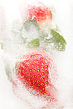 Strawberries partially frosen in ice Royalty Free Stock Photography