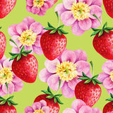 Strawberries and Peony seamless hand drawn pattern Stock Photography