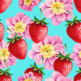 Strawberries and Peony seamless hand drawn vector  Stock Photos
