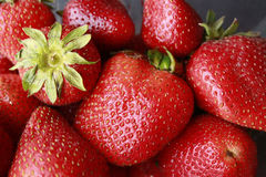 Strawberries in a pile Royalty Free Stock Image