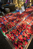 Strawberries in plastic baskets Royalty Free Stock Photography