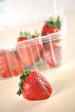 Strawberries in a Plastic Box Stock Photography