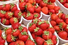 Strawberries. In plastic Containers on Farmers Market in Italy stock photos