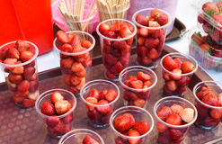Strawberries in plastic cup Royalty Free Stock Photo