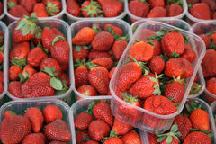 Strawberries in plastic trays Royalty Free Stock Photography