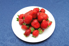 Strawberries in plate. Strawberries in white plate on a blue table-cloth Stock Images