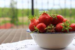 Strawberries in plate Royalty Free Stock Images