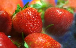 Strawberries rain. Closeup on fresh strawberries in blue plate washed with water shower Royalty Free Stock Photo