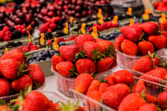 Strawberries, Raspberries Blackberries and Blueberries. Strawberry and mixed berries at the street market, yummy fresh fruit, Strawberries, Raspberries Royalty Free Stock Image