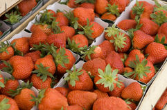 Strawberries ready for sale Royalty Free Stock Image