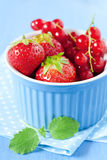 Strawberries and redcurrants Stock Image