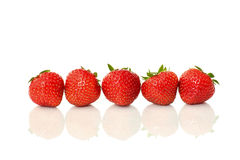 Strawberries. Five fresh red strawberries in a row with reflection isolated on white background stock photography