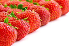 Strawberries in rows. Fresh ripe strawberries with stems on a white background Royalty Free Stock Images