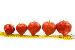 Strawberries and ruler Royalty Free Stock Photo