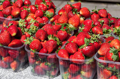 Strawberries for sale Stock Photos