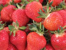 Strawberry. lots of strawberries. red berries. bazaar. green ponytail. fruits for sale. I have years for sale. fresh berries. fres royalty free stock photo