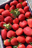 Strawberries. For sale in supermarket Stock Photography