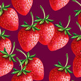 Strawberries seamless hand drawn pattern with purp Stock Images