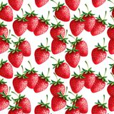 Strawberries seamless hand drawn pattern with whit Royalty Free Stock Image