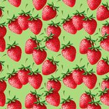 Strawberries seamless hand drawn seamless pattern with green backgroun Stock Photography