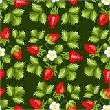 Strawberries seamless hand drawn vector pattern Stock Images