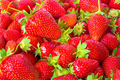 Strawberries Season. Fresh red strawberries for a healthy diet,photography Stock Photo
