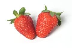 Strawberries seasonal fruit farming Emilia Romagna Italy Royalty Free Stock Image