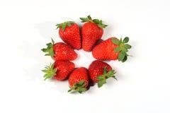 Strawberries seasonal fruit farming Emilia Romagna Italy Royalty Free Stock Images