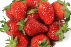 Strawberries seasonal fruit farming Emilia Romagna Italy Stock Image