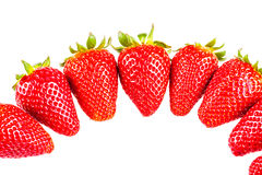 Strawberries semicircle Royalty Free Stock Photos