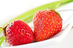 Strawberries served Royalty Free Stock Images