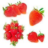 Strawberries set isolated on white Royalty Free Stock Photos