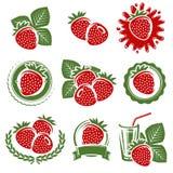 Strawberries set. Vector Stock Photography