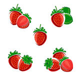 Strawberries set. Vector Royalty Free Stock Images