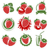 Strawberries set. Vector Stock Image